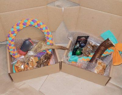 gavbox коробочка сюрприз для собак